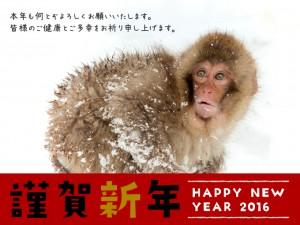 2016年謹賀新年